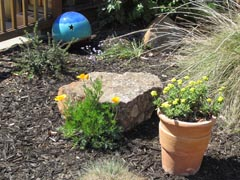 garden scene: large clay flowerpot containing yellow flowers, deer grass, flat rock, large blue ball