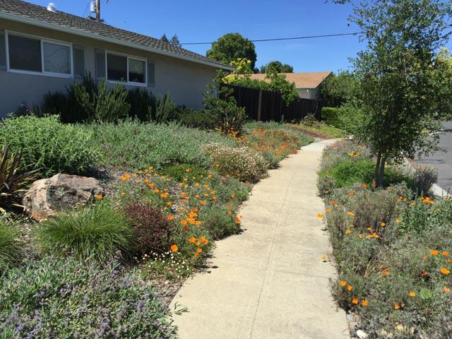 a-bm-floral-sidewalk