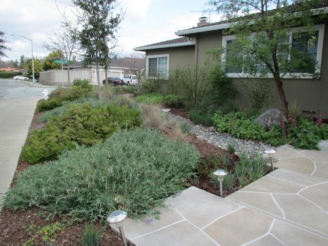 curb-side-planting